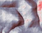 rip net
